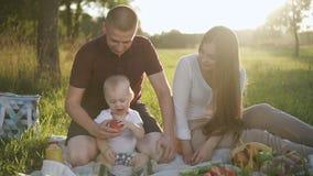 Szczęśliwa rodzina z dziecięcym dzieckiem jest przy pinkinem w zieleń parku na letnim dniu zbiory