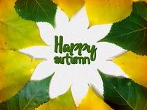 Szczęśliwa spadek gratulacje karta z koloru żółtego i czerwieni liśćmi Zdjęcia Stock