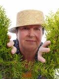 Szczęśliwa starsza ogrodniczka Zdjęcia Stock