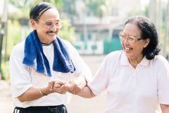 Szczęśliwa starsza para trzyma each inny wręcza obraz royalty free