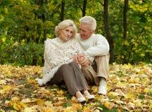 Szczęśliwa starszej osoby para Zdjęcia Royalty Free