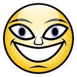 Szczęśliwa twarz Zdjęcia Stock
