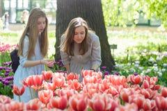 Szczęśliwa uśmiechnięta mama i nastoletnia córka w parku obrazy stock
