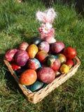Szczęśliwa wielkanoc, Easter jajka w koszu na trawie Fotografia Stock