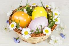 Szczęśliwa wielkanoc! Wielkanocna karta Fotografia Stock
