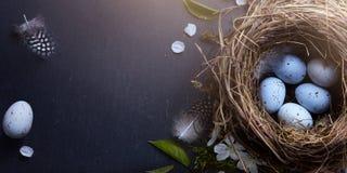 Szczęśliwa wielkanoc; Wielkanocni jajka w gniazdeczku i wiośnie kwitną na stołowych półdupkach Obraz Royalty Free