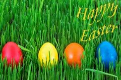 Szczęśliwa wielkanoc - Wielkanocni jajka w trawie Obrazy Royalty Free