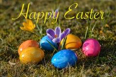 Szczęśliwa wielkanoc z kilka kolorowymi Wielkanocnymi jajkami kłama na traw wi obrazy stock