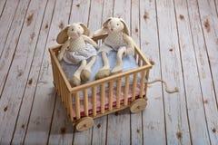 Szczęśliwe brata i siostry królika zabawki obraz royalty free
