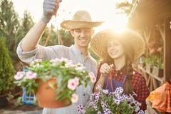 Szczęśliwe faceta i dziewczyny ogrodniczki w słomianych kapeluszy chwycie puszkują z cudowną petunią w ogródzie na świetle słonec fotografia royalty free