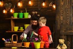 szczęśliwe ogrodniczki z wiosna kwiatami Rodzinny dzień charcica Brodata mężczyzny i chłopiec dziecka miłości natura Ojciec i obraz royalty free