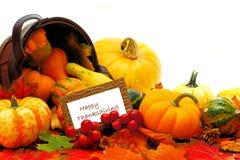 szczęśliwego Święta dziękczynienia Zdjęcia Stock