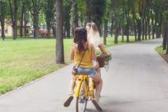 Szczęśliwego boho modne dziewczyny jadą wpólnie na bicyklach w parku Obraz Stock