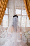 szczęśliwego dnia ślubu Fotografia Royalty Free