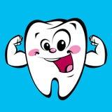 Szczęśliwej ślicznej kreskówki zębu silny charakter robi władza gestowi Obrazy Stock