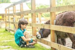 Szczęśliwej młodej chłopiec żywieniowy osioł na gospodarstwie rolnym Zdjęcie Stock