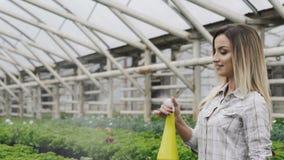 Szczęśliwi ładni dziewczyny opryskiwania flowerpots w szklarni wolno zbiory wideo
