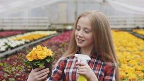 Szczęśliwi ładni dziewczyny opryskiwania flowerpots w szklarni wolno zdjęcie wideo