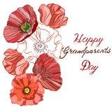 Szczęśliwi dziadkowie dni, ręka rysujący literowanie, wektor Obraz Royalty Free