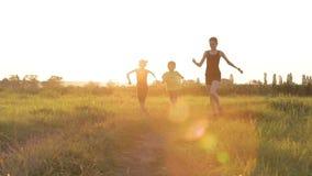 Szczęśliwi dzieci bawić się w parku zbiory