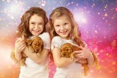 Szczęśliwi dzieci i psy na wigilii Nowy rok 2018 Wakacyjny pojęcie, boże narodzenia, nowego roku tło Obrazy Stock