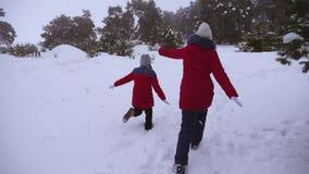 Szczęśliwi dzieci są zabawy bieg wzdłuż śnieżnej zimy drogi w sosna parku na zima mroźnym dniu Wiek dojrzewania sztuki keczup wew zbiory