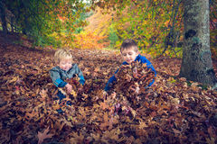 Szczęśliwi dzieciaki bawić się z liśćmi zdjęcie royalty free