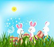 Szczęśliwi Easter jajka i królika tło z białymi dandelions Fotografia Royalty Free