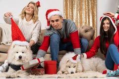 Szczęśliwi młodzi ludzie w Santa kapeluszach i dwa wite psach w Santa kapeluszach także obrazy royalty free