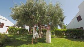 Szczęśliwi rodzice i dzieci w zieleni uprawiają ogródek z dużym drzewem oliwnym zbiory