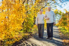 Szczęśliwi starsi obywatele w jesieni rodzinie, wieku, sezonie i ludziach pojęć lasowych, - szczęśliwa starsza para chodzi zdjęcia royalty free