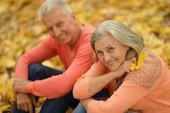 szczęśliwi starzy ludzie Fotografia Royalty Free