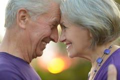 szczęśliwi starzy ludzie Zdjęcia Stock
