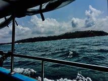 Szczęśliwi wakacje w ten dni, zobaczyliśmy delfiny Fotografia Royalty Free