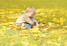 Szczęśliwy śliczny małego dziecka obsiadanie na trawie i bawić się z żółtymi liśćmi w jesieni zdjęcia royalty free