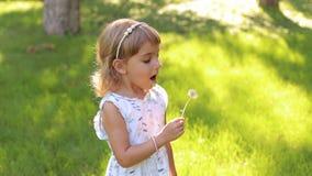 Szczęśliwy śliczny małej dziewczynki dmuchanie na dandelion kwiacie w letnim dniu zbiory wideo