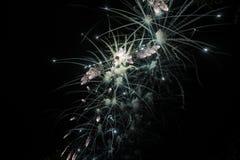 Szczęśliwy świętowanie fajerwerk Obrazy Royalty Free