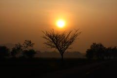 Szczęśliwy światło słoneczne Fotografia Stock