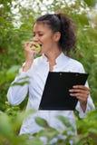 Szczęśliwy agronom kosztuje smak świezi jabłka Obraz Stock