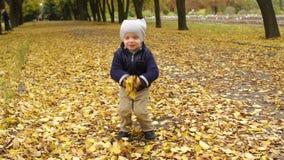 Szczęśliwy chłopiec miotania kolor żółty opuszcza w jesień parku zdjęcie wideo