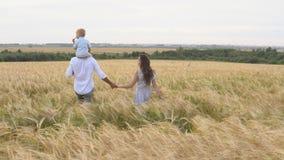 Szczęśliwy dzieciństwo, rodzinny odprowadzenie na pszenicznym polu zdjęcie wideo