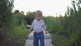 Szczęśliwy dzieciństwo, słodki chłopiec odprowadzenie na drewnianego mostu bosym outdoors wśród wysokich płoch zbiory