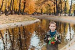 Szczęśliwy dzieciak chłopiec odprowadzenie w parku Udziały żółci liście wokoło Chłopiec stojaki przy jeziorem obrazy stock