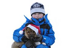 Szczęśliwy dziecko i pies na wigilii Zdjęcia Royalty Free