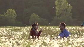 Szczęśliwy dziecko zabawa bieg i bawić się wokoło rodziców dmucha dandelions, rodzinny plenerowy odtwarzanie zbiory