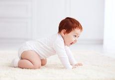 Szczęśliwy, dziewięć miesięcy starego dziecka czołgania na dywanie w domu Obrazy Royalty Free