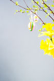 Szczęśliwy Easter czas, Easter Zdjęcie Stock
