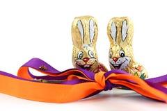 Szczęśliwy Easter królik, biedronka, uśmiech Fotografia Stock