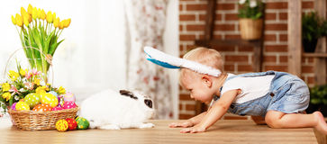 Szczęśliwy Easter! szczęśliwa śmieszna chłopiec bawić się z królikiem Fotografia Stock