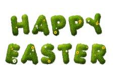 Szczęśliwy Easter trawy tekst Fotografia Royalty Free